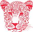 CR Judd Logo