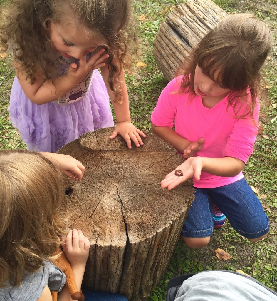 Students exploring outdoors